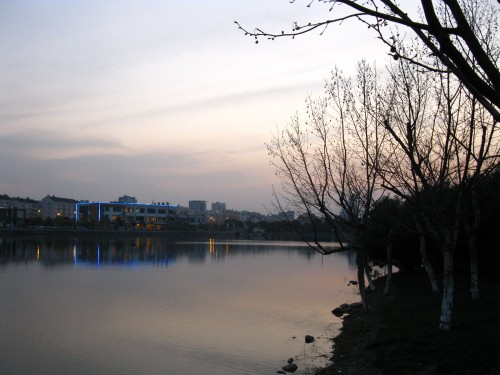 傍晚,国际科技园后花园
