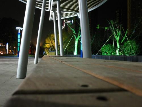 楼下,公交站的后花园